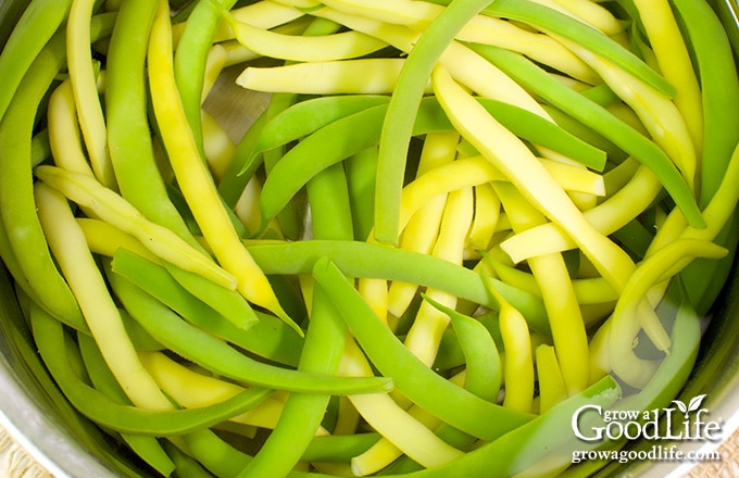 overhead closeup of green and yellow string beans in a pot