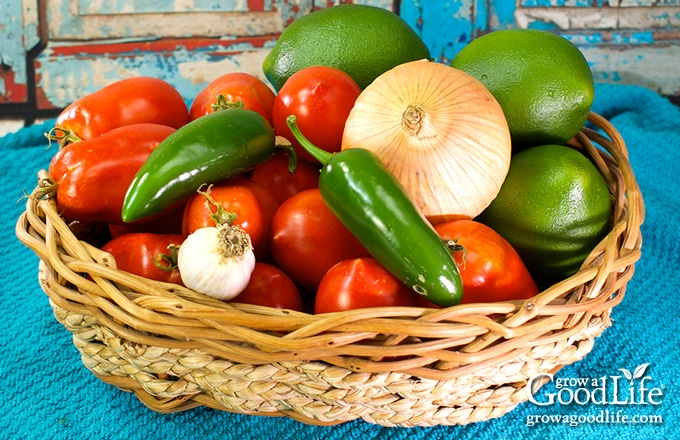 basket of salsa ingredients