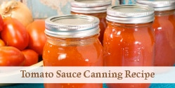 canned pint sized jars of tomato sauce
