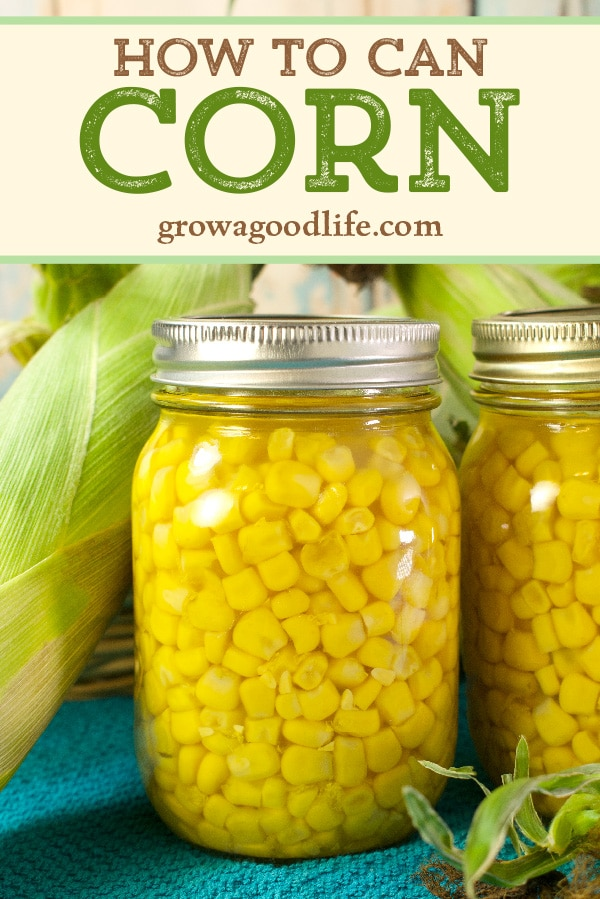 closeup of a jar of canned whole kernel corn