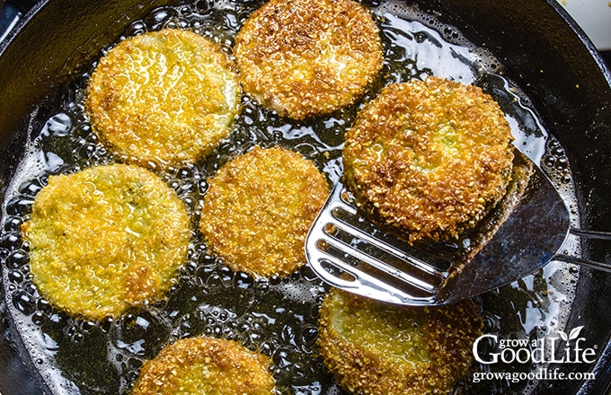 frying breaded green tomato slices in a skillet