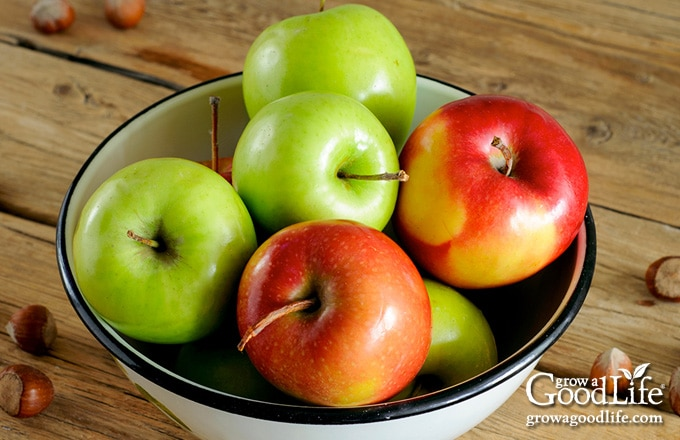red and green apples in a white bowl