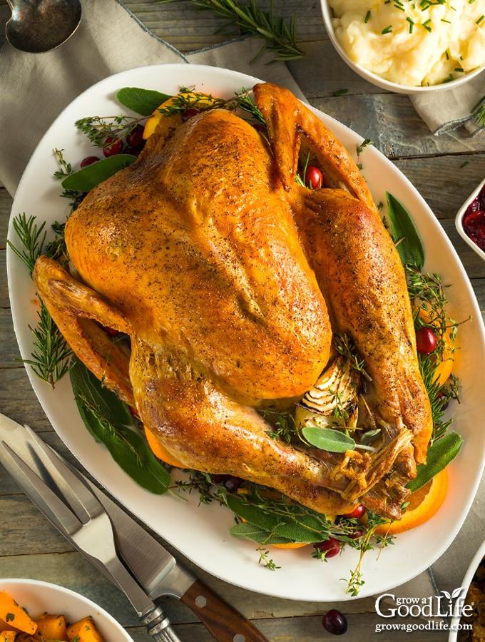 Roasted Turkey With Italian Sausage Stuffing