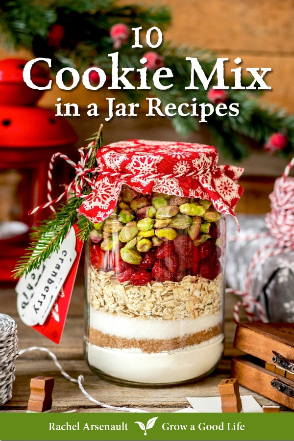cover image of 10 Cookie Mix in a Jar Recipes ebook