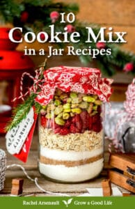 cover image for 10 Cookie Mix in a Jar Recipes eBook