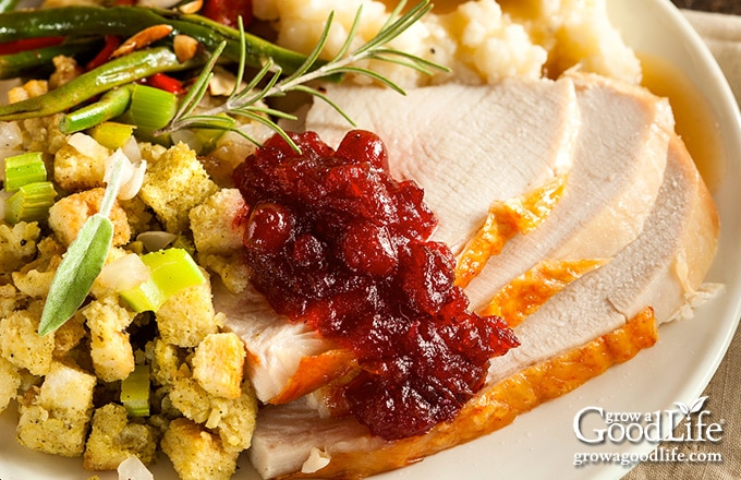 plate of Thanksgiving food with cranberry sauce