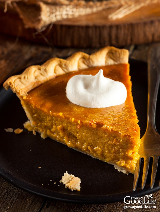 Slice of pumpkin pie on a table