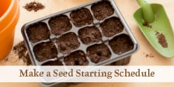 seed starting tray filled with soil