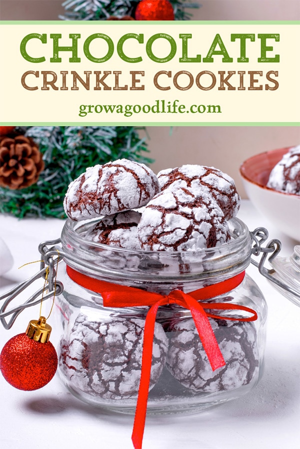 chocolate crinkle cookies in a jar on a table