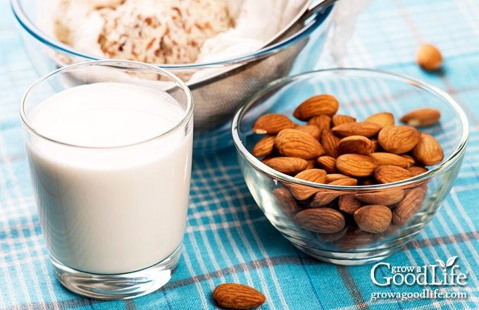a bowl of almonds next to a glass of almond milk