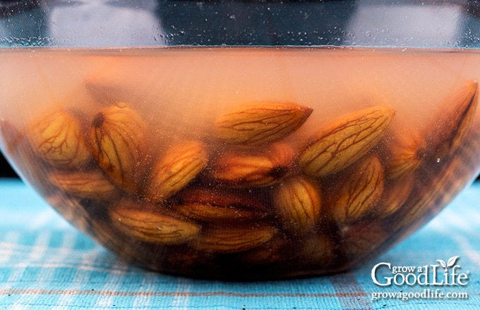 almonds after soaking overnight