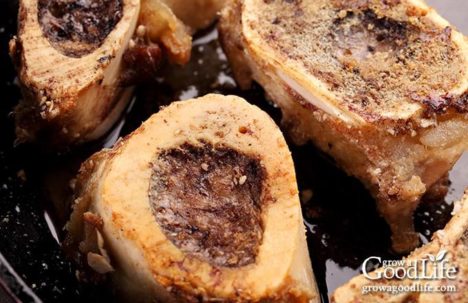 closeup image of roasted beef bones