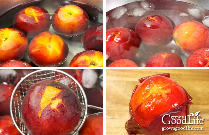 steps for blanching and peeling peaches