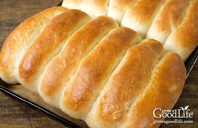 baked rolls in a pan