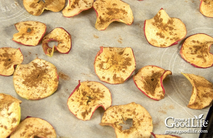 apple chips on a baking sheet