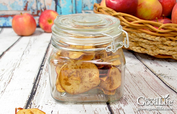 baked apple chips stored in a jar