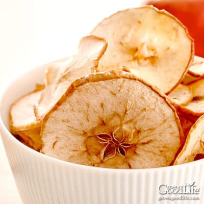 dried cinnamon apple chips in a bowl