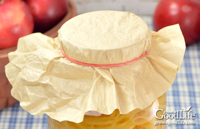 jar covered with a coffee filter and elastic band