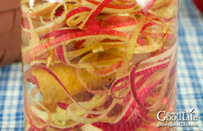 closeup of a jar filled with apple peels and cores
